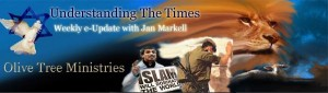 Arab Spring article by Jan Markell